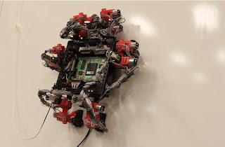 gecko-robot