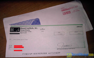 Cek hasil pembayaran paid survey Brand Institute | SurveiDibayar.com