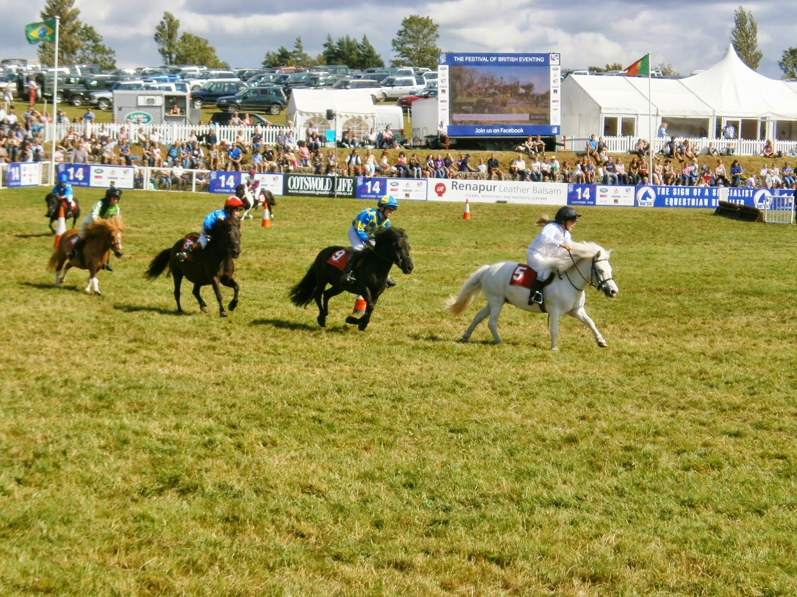 Shetland Pony Grand National at Gatcombe