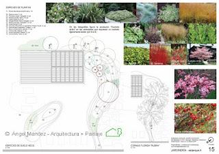 planos de paisajismo