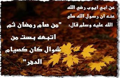 صور صور عن اخر رمضان 2019 صور عن العشر الاواخر 2015_1402176546_191.