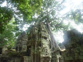 Templos de Angkor, Ta Prohm.