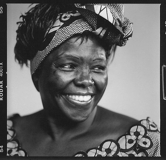 Wangari Maathai: the woman who planted trees