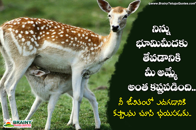 telugu amma kavithalu,best mother importance sayings, nice telugu amma kavithalu