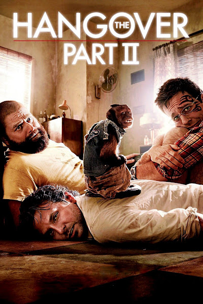 The Hangover Part II (2011) Dual Audio Hindi 350MB BluRay 480p ESubs