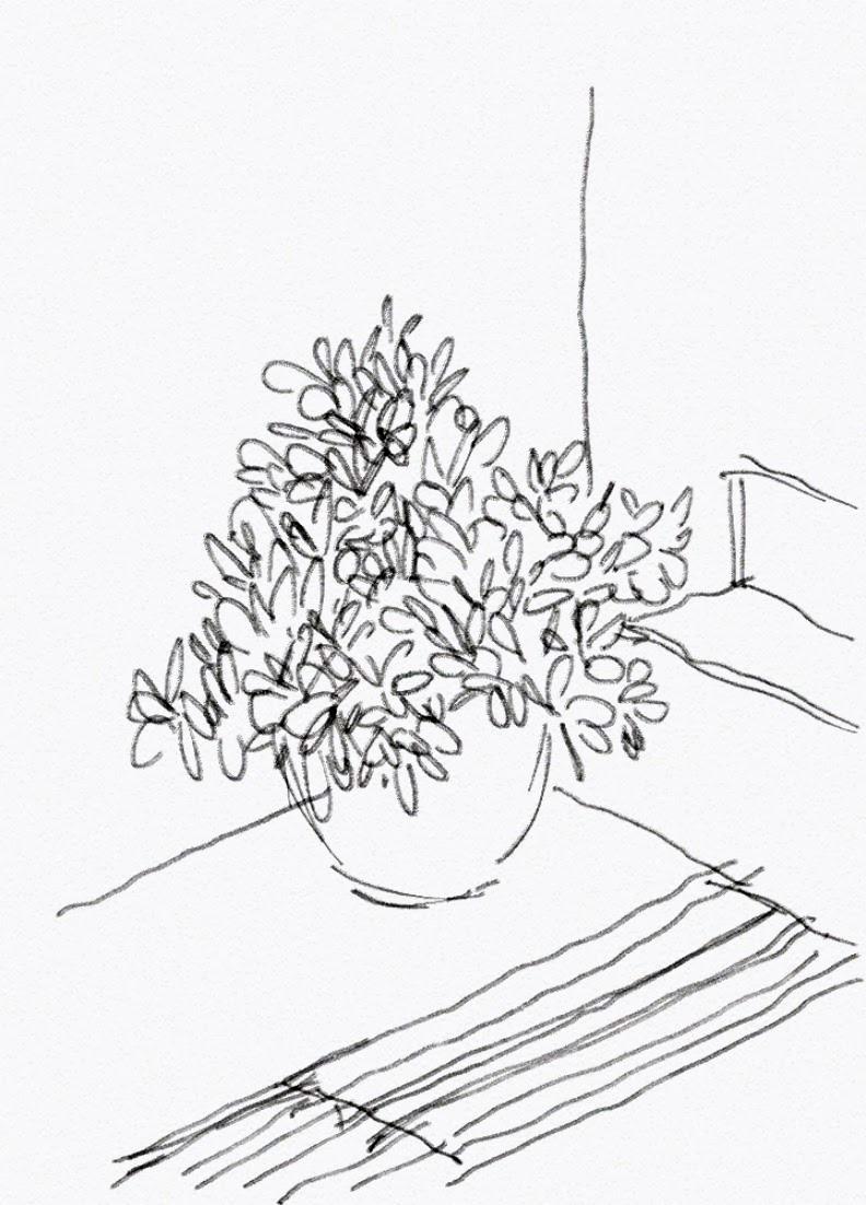 Lakaran Di Bawah Ialah Sebuah Pasu Bunga Dengan Pokok Renek Kehijauan Yang Begitu Menarik Perhatian Saya Dan Dilukis Semula Dikala Sesi Menunggu