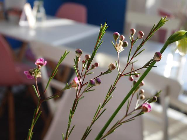 flower decoration at cafe domenica brighton