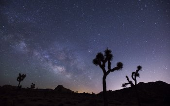 Wallpaper: Milky Way (Lactea)