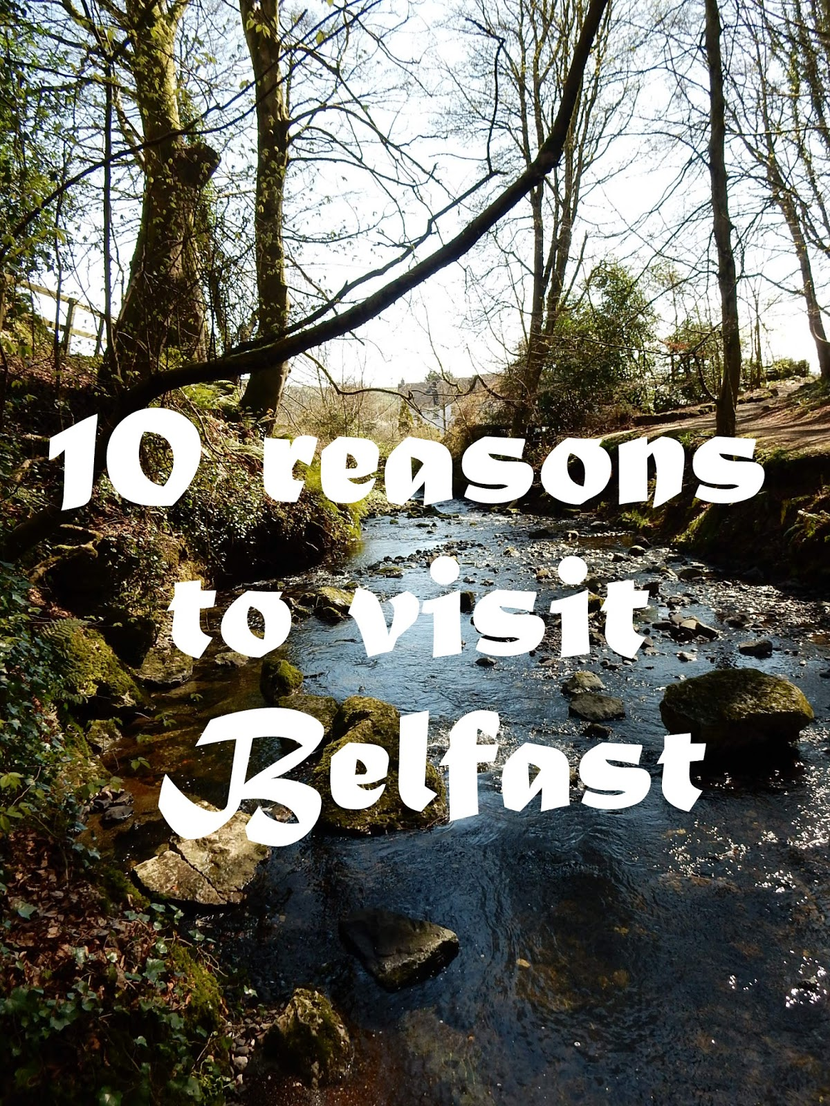 10 reasons you should go to Belfast Adventures of a London Kiwi