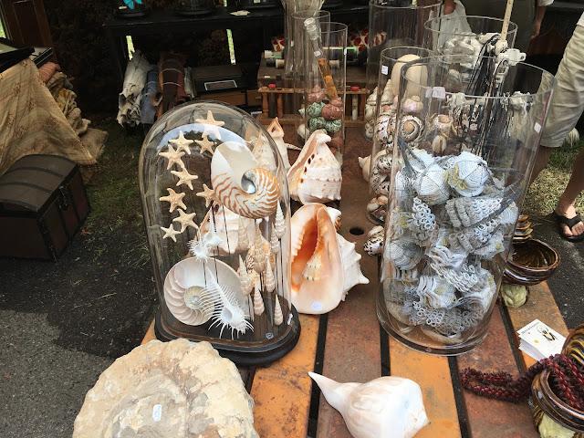 Globes de mariée coquillages Objets & Créatures - photo Refais ta déco!