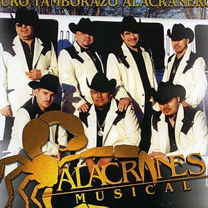 Los Rieleros Del Norte Discografia Descargar Mega Download