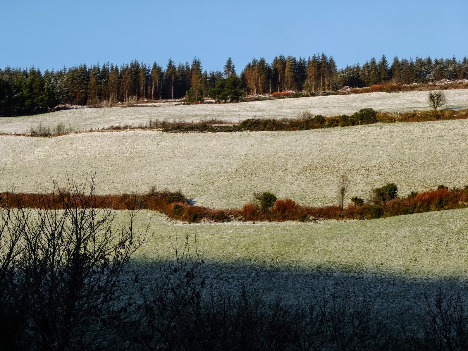Snow slowly disappearing from a hillside in North County Cork on a sunny day.