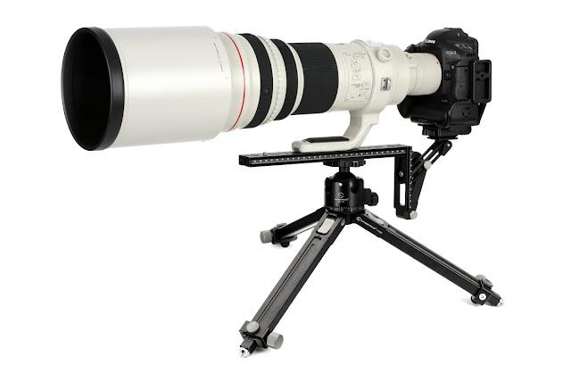 Sunwayfoto T1A20 w/ XB-52DDH and Canon EOS-1 D IV w/ EF 600 f4