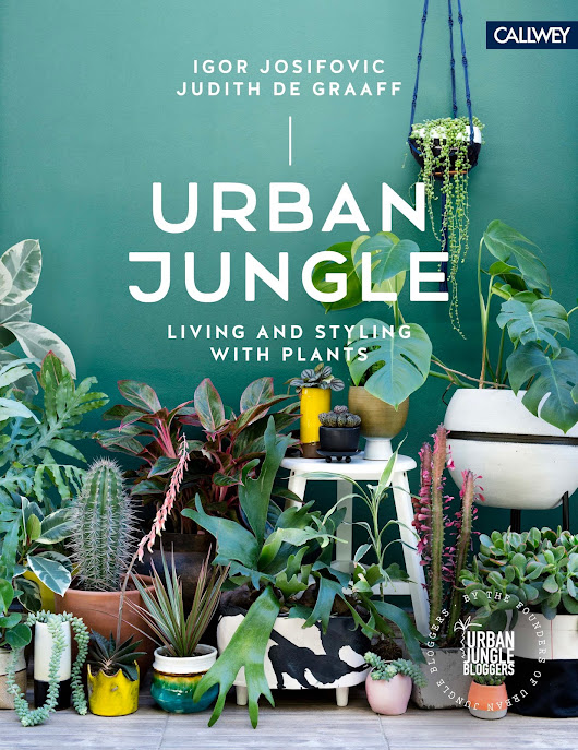 Urban jungle book – for plants lovers
