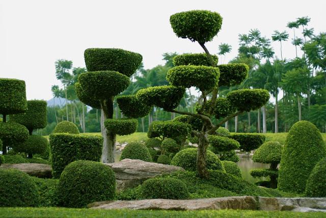 Jardín Botánico Tropical de Nong Nooch