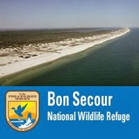 Gulf Shores Alabama, Bon Secour National Wildlife Refuge