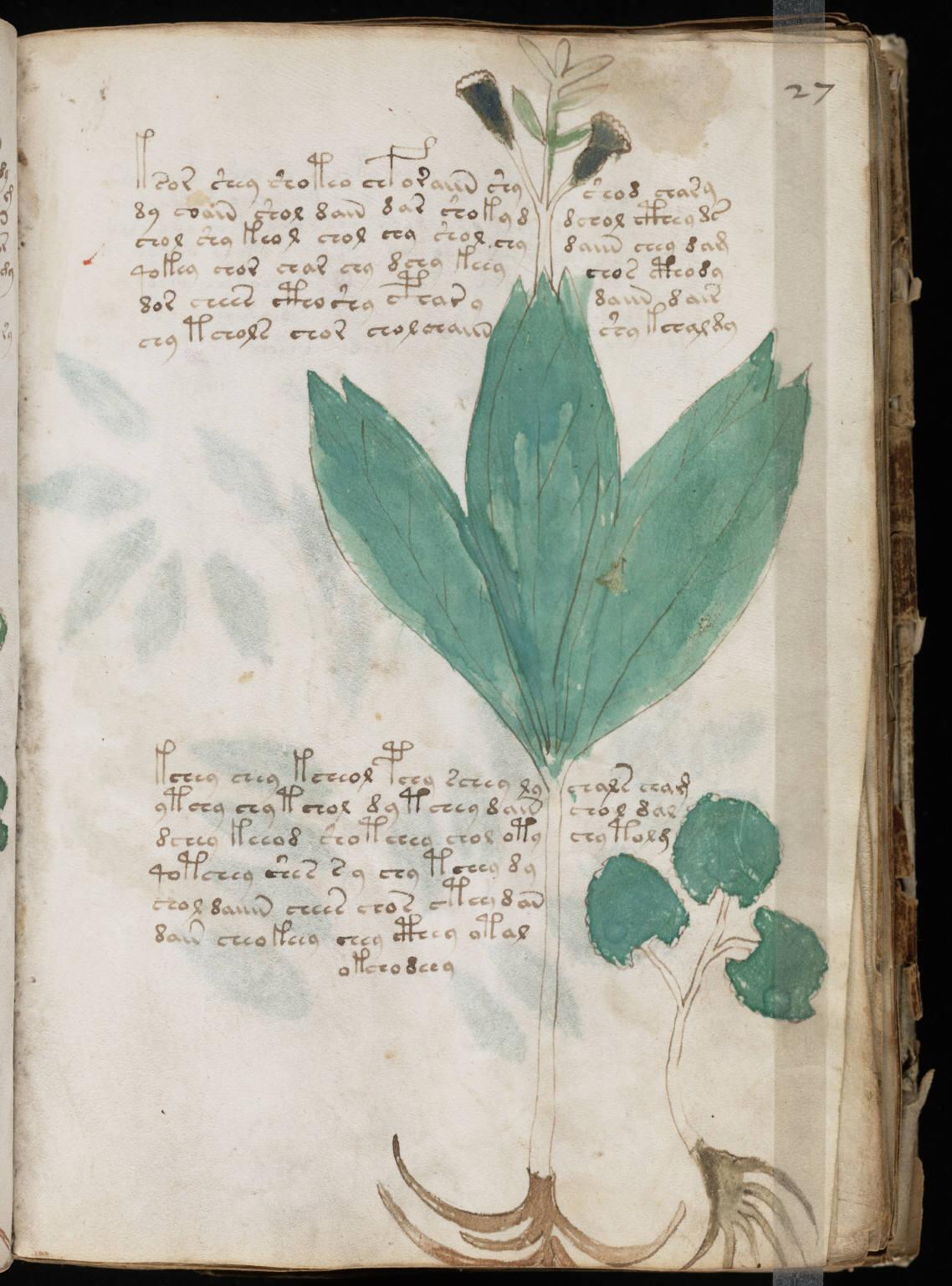manuscrito051