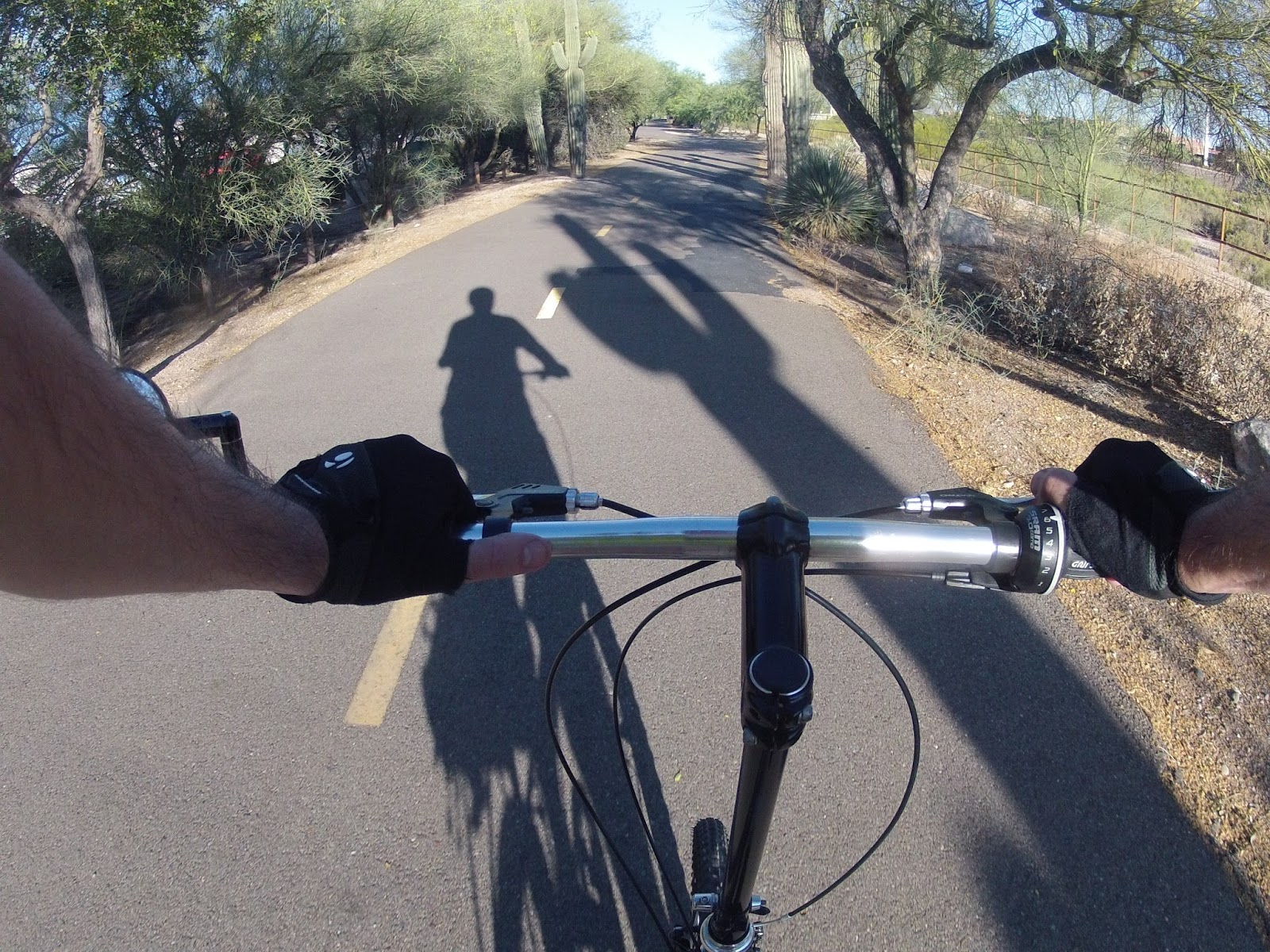 the ride between the rillito path to the university is nice mountain ave has a buffered bike lane most of the way