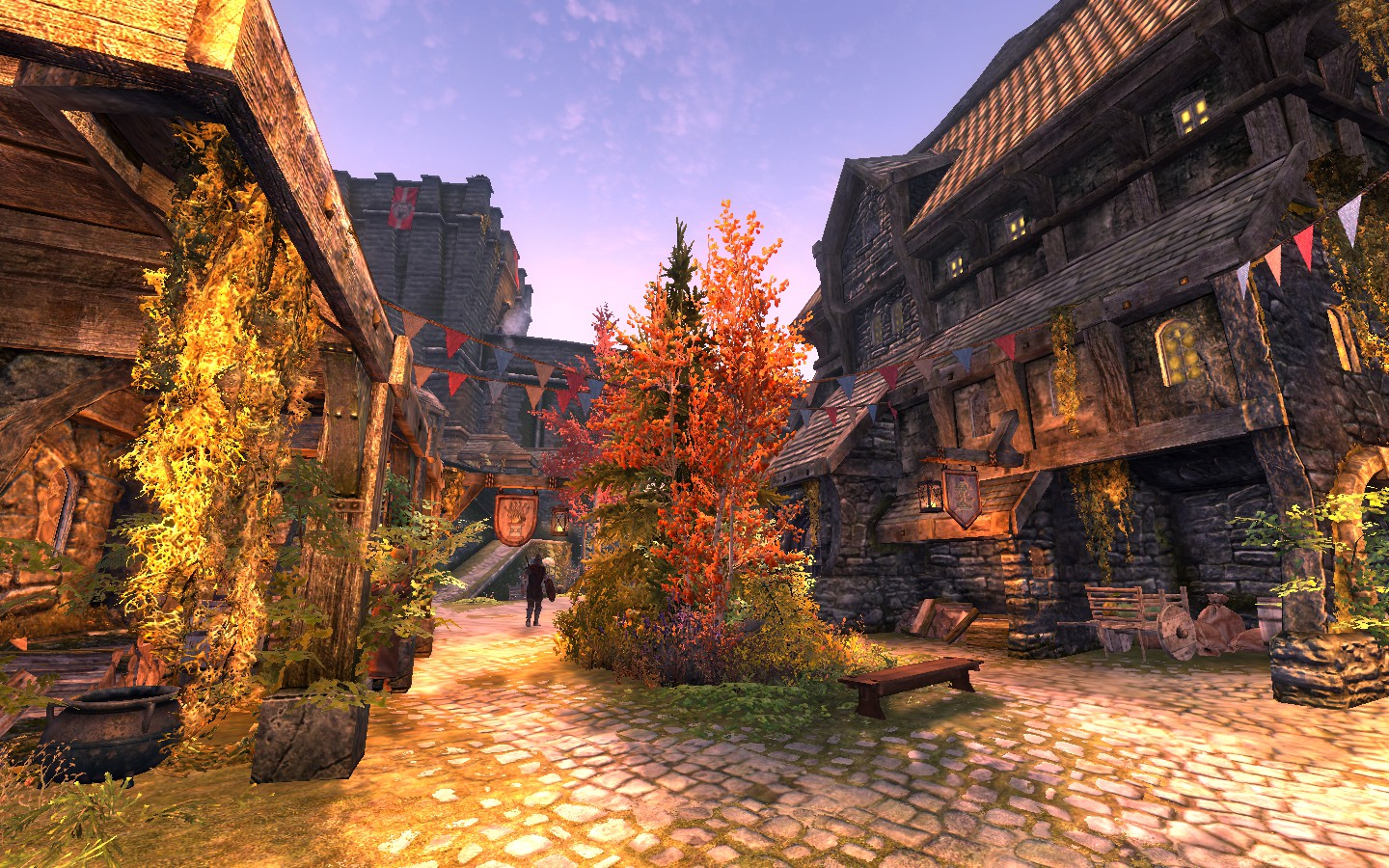 great fit price reduced wholesale dealer Transforming Tamriel - The Best Skyrim Mods for PS4