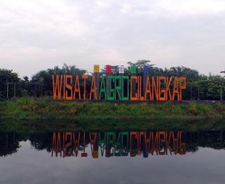 http://www.teluklove.com/2017/05/pesona-keindahan-wisata-agrowisata.html