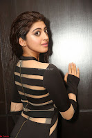 Pranitha Subhash in a skin tight backless brown gown at 64th Jio Filmfare Awards South ~  Exclusive 117.JPG