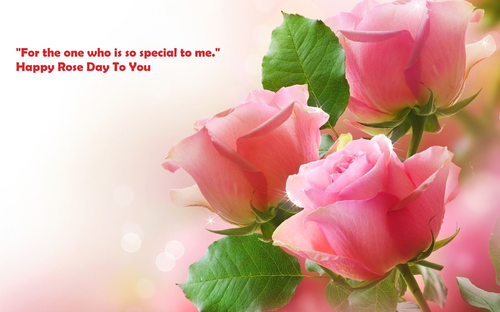 rose day sms in English