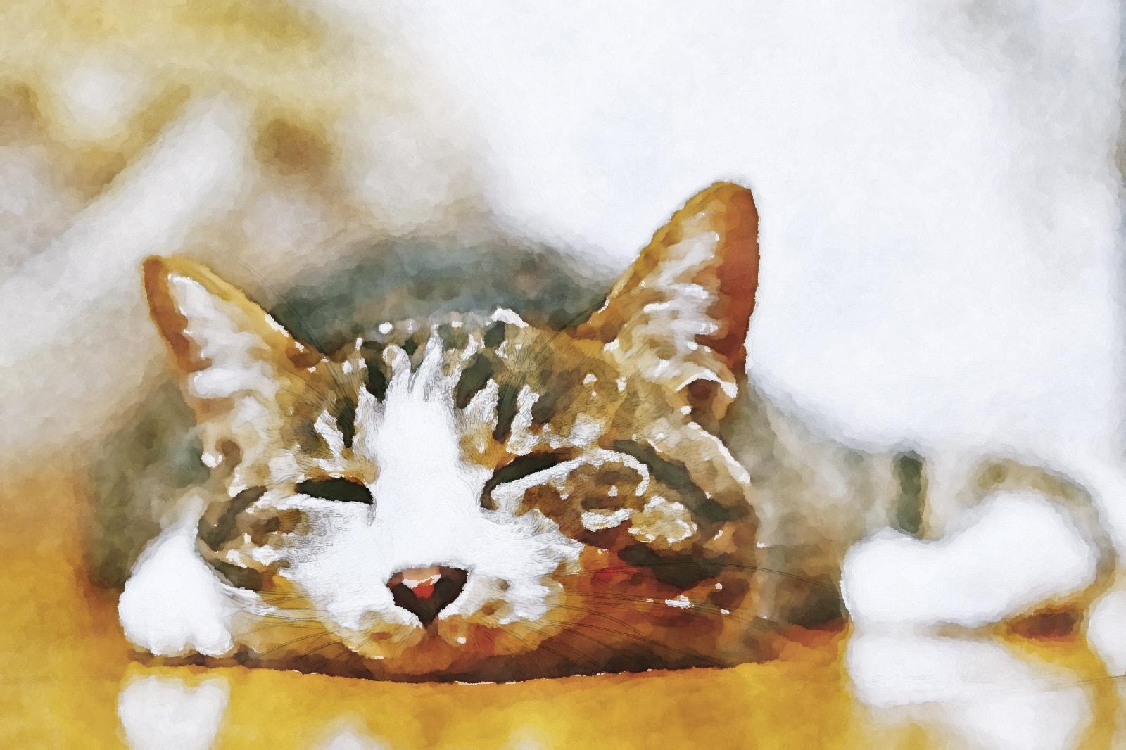 水彩画の猫(床暖房)