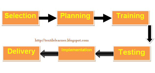 Basic ERP system implementation process.