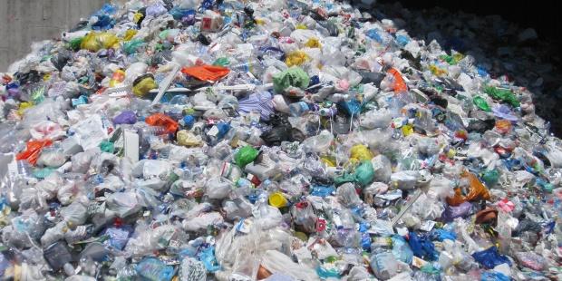 Los desechos pl sticos marinos aliados para las especies for Plastico para lagunas artificiales