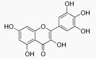estrutura-quimica-miricetina-formula
