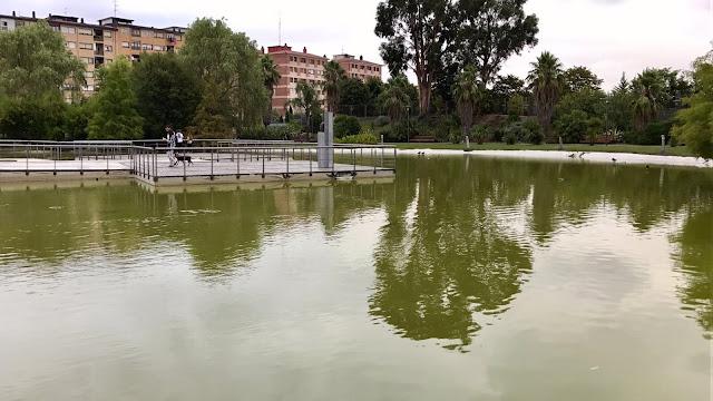 estanque del jardín botánico