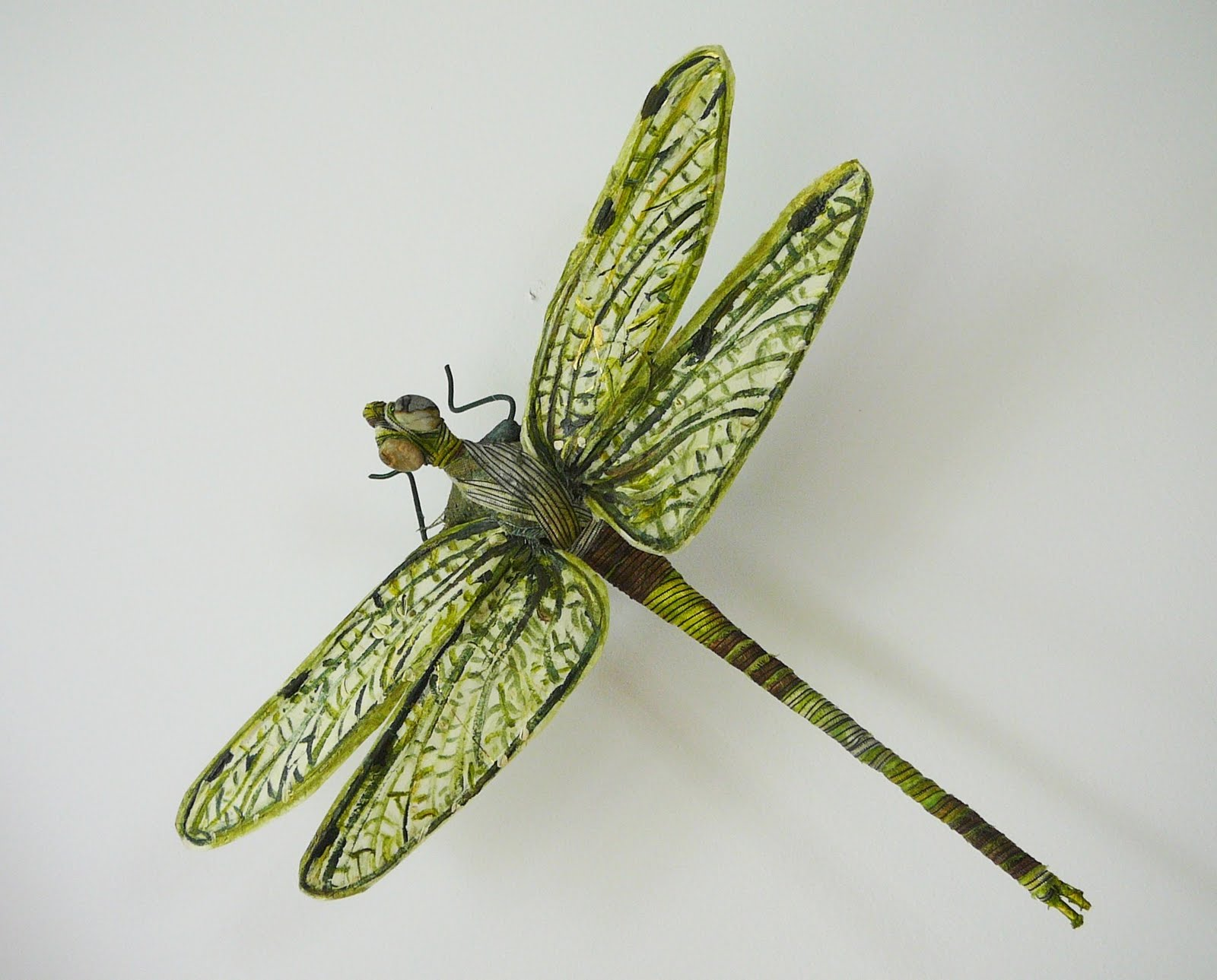 Green dragonfly pictures - photo#49