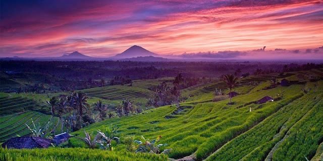 Bali In Brief - The Ultimate Concise Travel Guide