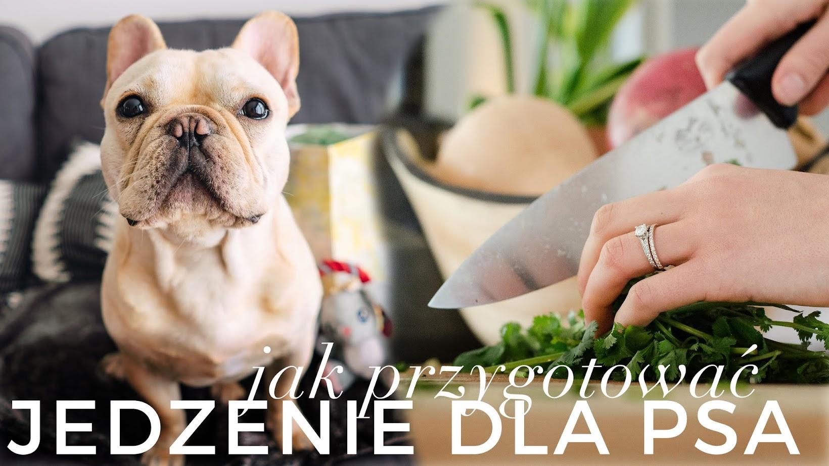 Gotuję zdrowe jedzenie dla mojego psa! | Alergie, Problemy Trawienne | Koszt + Proces