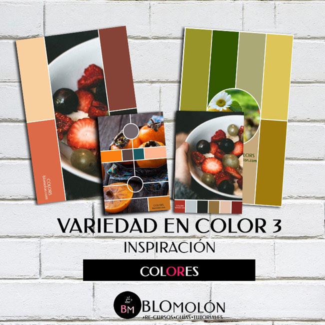 variedad_en_color_3