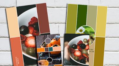 Variedad En Color 3
