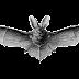 Primeur voor Maastricht: vleermuisvriendelijke verlichting