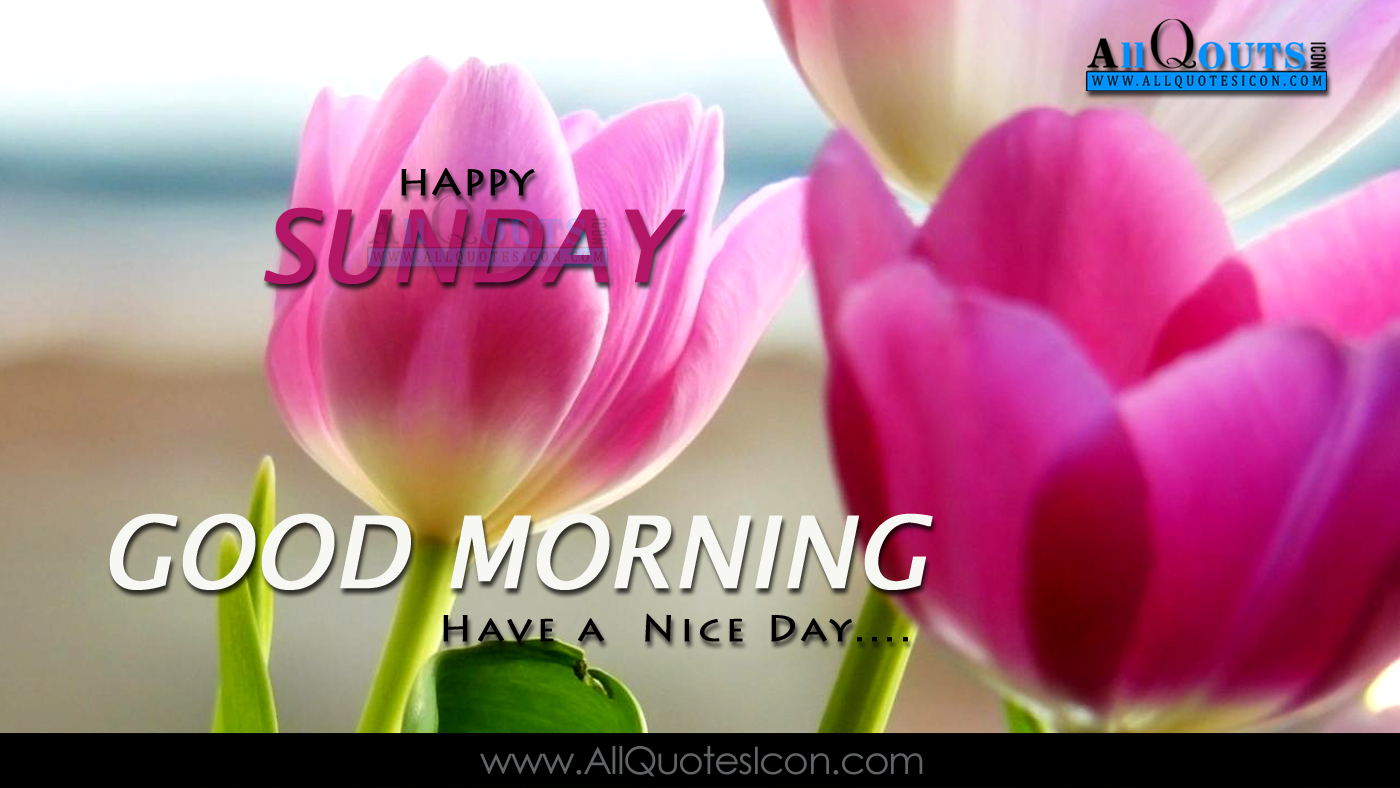 Happy Sunday Quotes Images Best English Good Morning Quotes Wishes