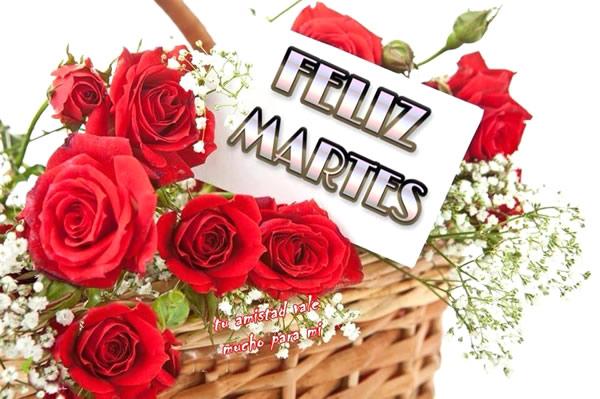 rosas rojas FELIZ MARTES