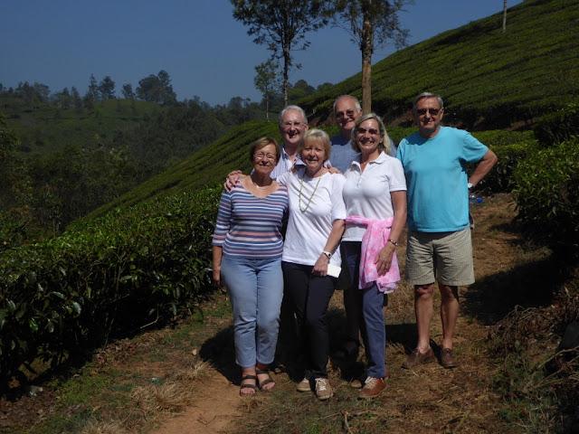 plantation thé a munnar