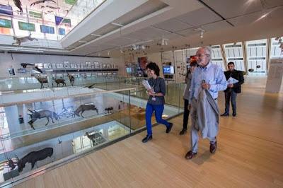 Renzo Piano-studi-architettura-famosi-Milano