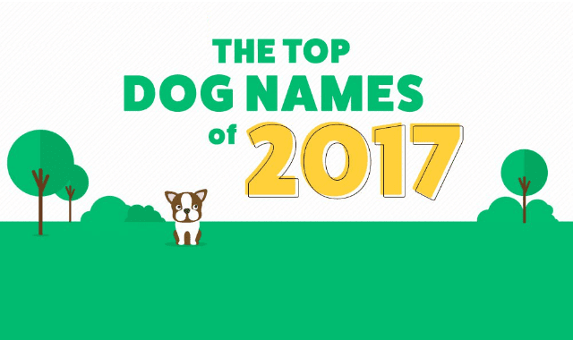 The Top Dog Names of 2017