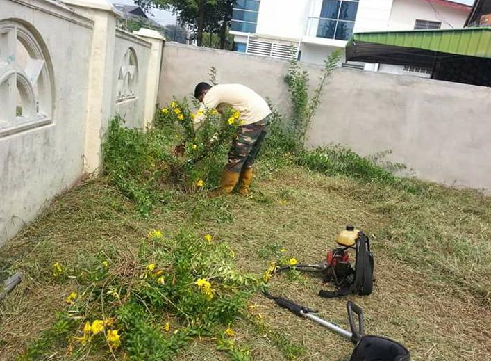 Bisnes Perkhidmatan potong Rumput