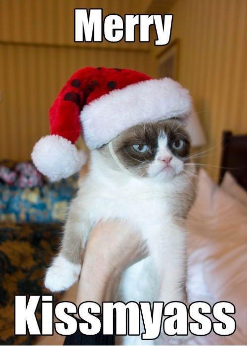 Funny Merry Xmas Meme Merry KissmyAss