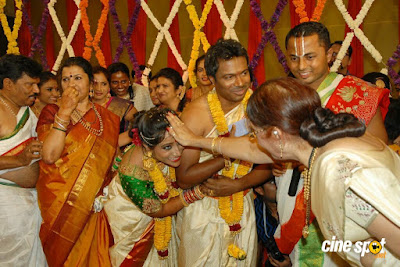 T S Nagabharana Son Pannaga Wedding Photos _21_