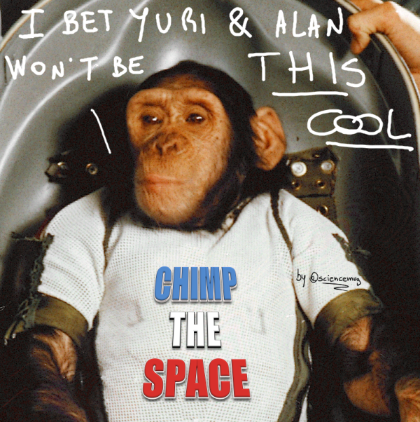 Ham the NASA chimp (by @sciencemug)