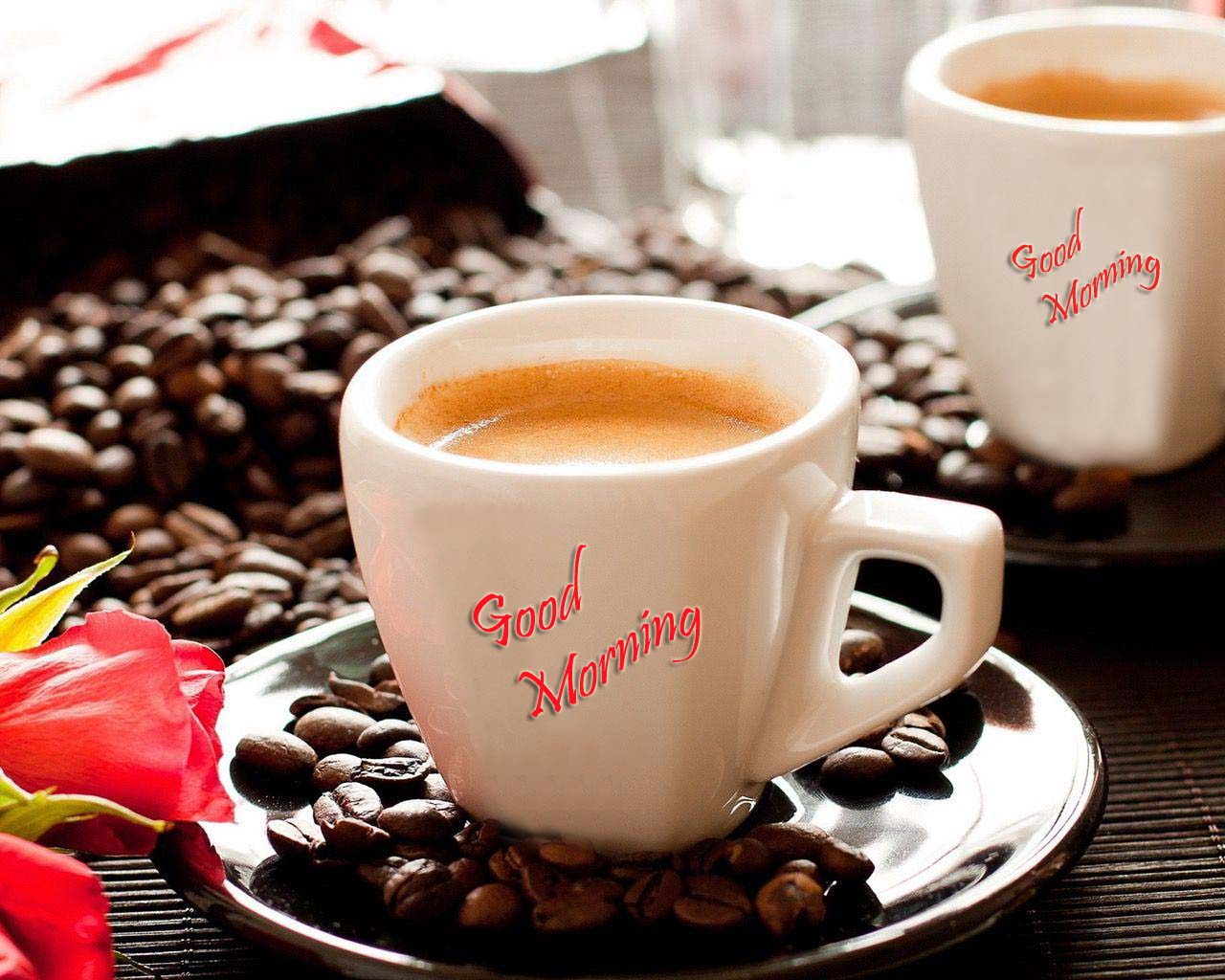 Lovely and Beautiful Good Morning Wallpapers ~ Allfreshwallpaper