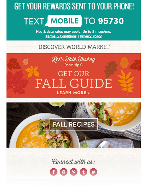 World Market holiday email campaign