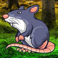 Wowescape Giant Rat Fantasy Escape