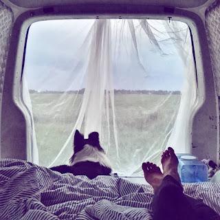 mosquito net in campervan